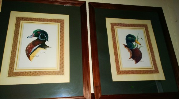 framed duck prints